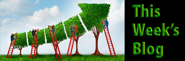 Fundraising matchmaking: solicitors and prospects