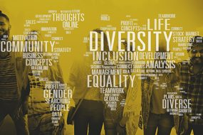 Inclusion, Diversity, Equity, and Access
